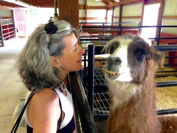 bonnie-wyper-with-lama